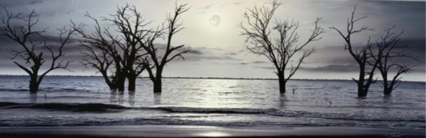 FULL MOON RISING   MENINDEE LAKES  CANVAS LITHOGRAPH 900mm X 300mm